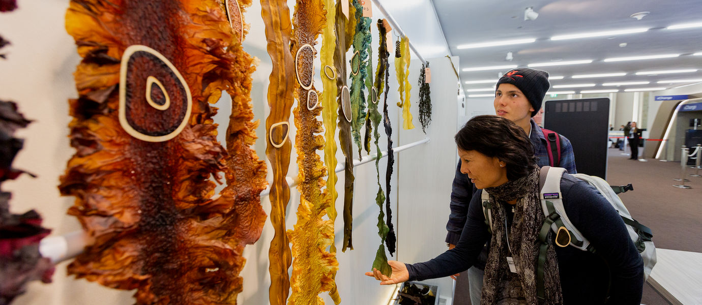Seaweed samples at the World Economic Forum 2020. Photo:  WEF/ Christian Clavadetscher