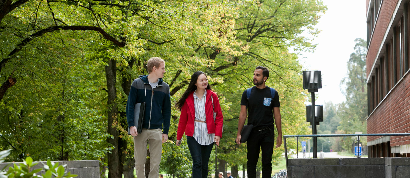 Three people walking at campus