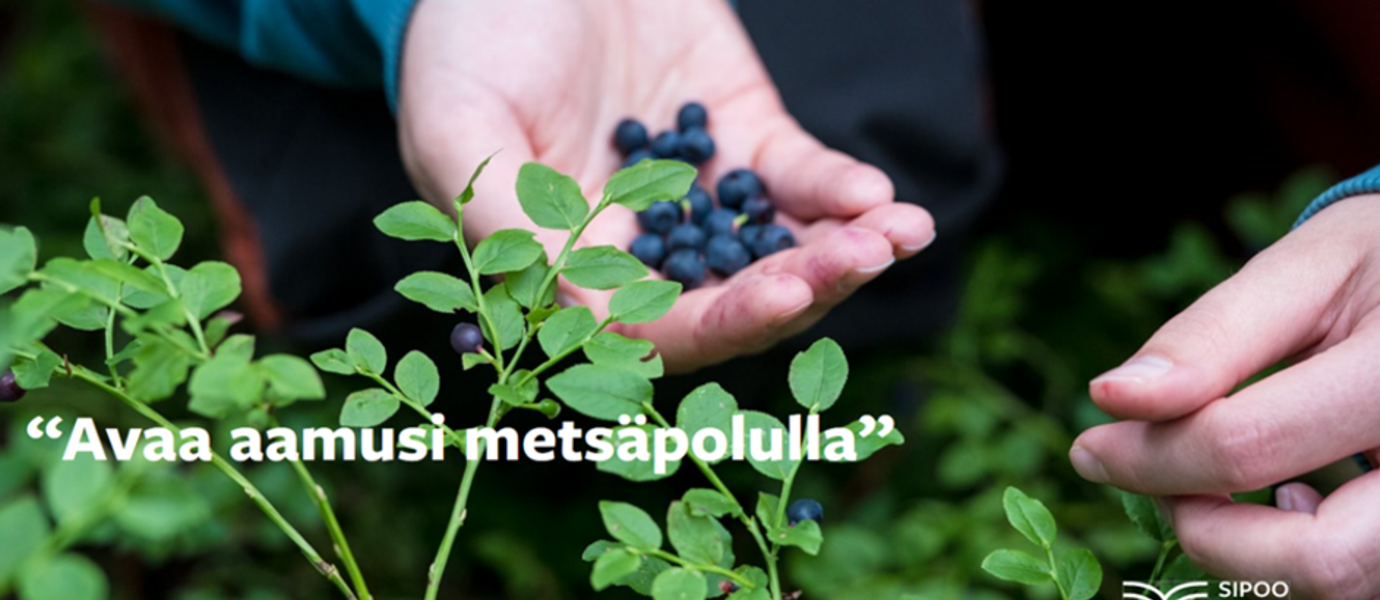 "Hand-picked blueberries and a slogan ""Avaa aamusi metsäpolulla"" (""Begin your mornings on forrest trails"")."