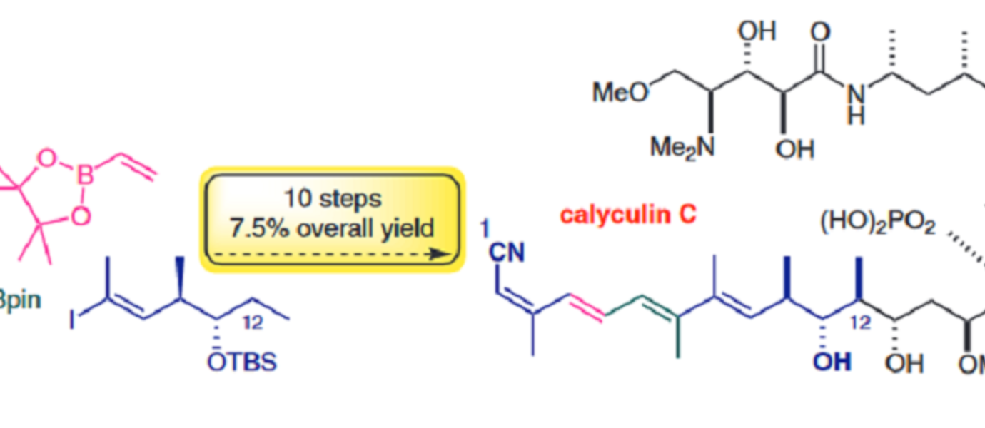 Synthesis of the C1-C12 Fragment of Calyculin C