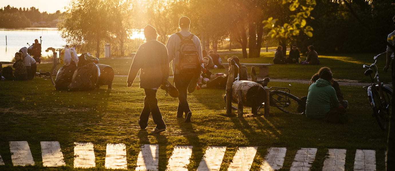 people sitting and walking around in a park in summery sunset