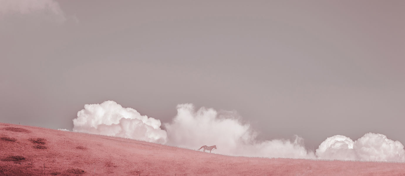 Photo by Petri Juntunen, called Untitled (Of Clouds and Clocks), 2019. A horse standing in front of clouds in the red-shaded picture.