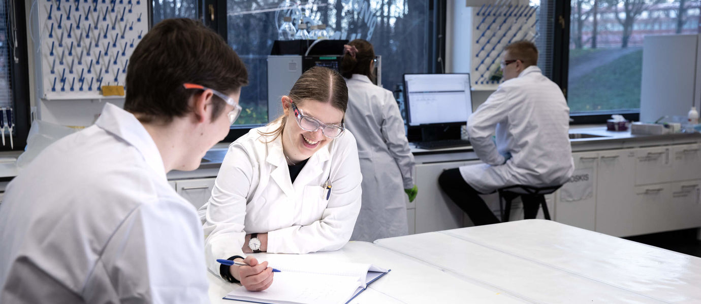 Students studying in groups in the laboratory