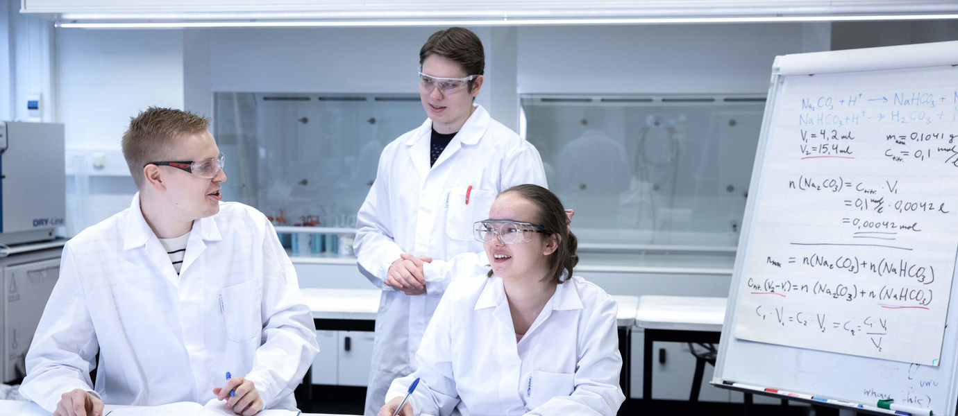 Students doing group work in the laboratory