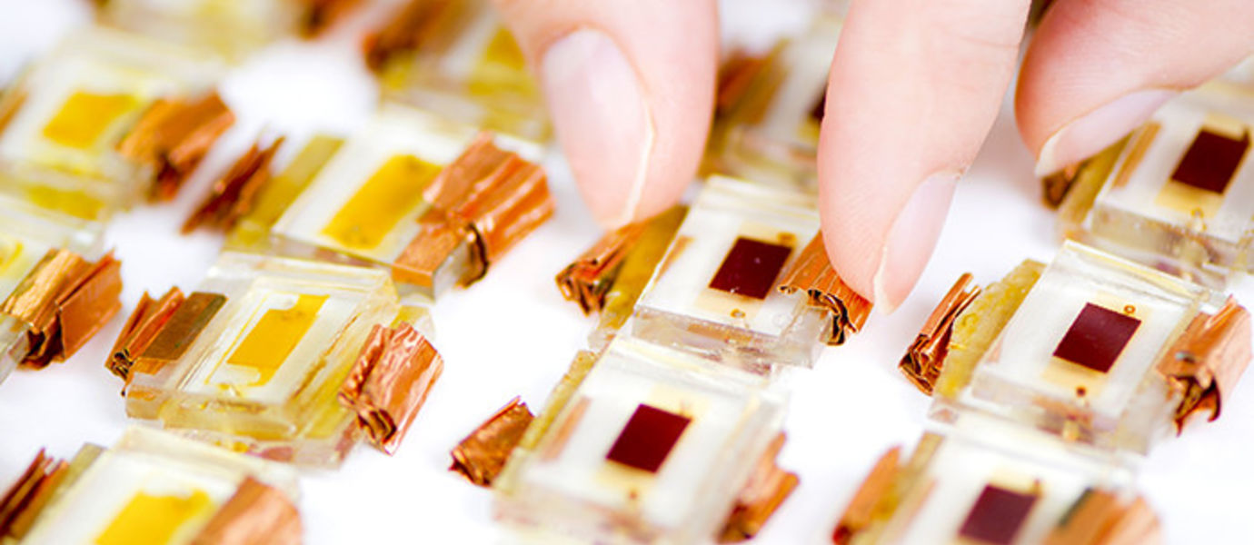 In studies on the ageing of perovskite solar cells and the dye cells in the picture, a sufficiently large number of samples is one of the prerequisites for quality. Photo: Valeria Azovskaya, Materials Platform, Aalto University.
