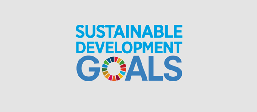 Global Sustainability Goals Logo