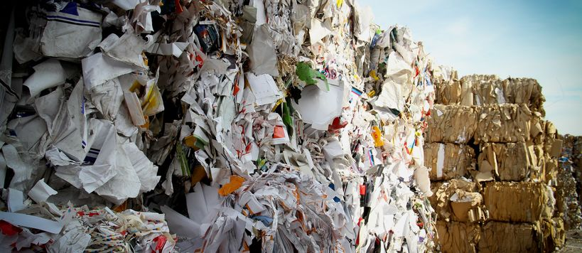 Bales of paper and cardboard waste