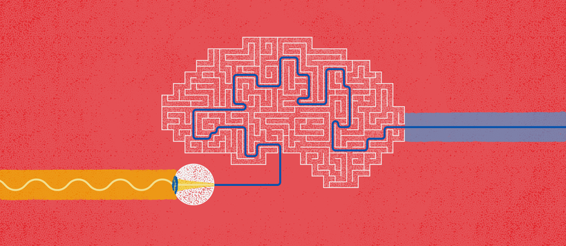 An illustration of a ray of light causing the eye to find a route through a maze in the brain. Illustration by Safa Hovinen.