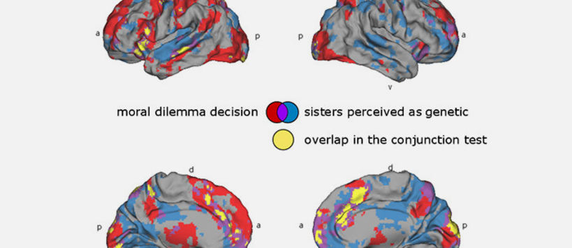 Brain activity for the two tasks of a) deciding to rescue the own sister, a friend, or strangers from a dangerous country in red and b) watching a movie believing to see genetically related sisters in blue.