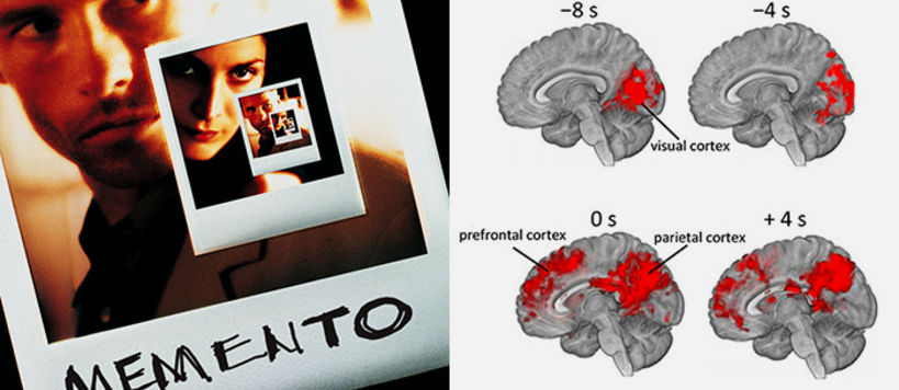 Marked red are the brain regions which process the clue-providing key scenes, both before and while they occur. Anticipatory activity appears on the visual cortex up to eight seconds before the scene begins. During the scenes, there's fingerprint-like activity in the prefrontal lobe and parietal lobe, both believed to be connected to memory retrieval and reinterpretation of previously seen events. Memento poster detail (left), (c) Oy Nordisk Film Ab | Image (right): Iiro Jääskeläinen.