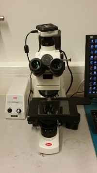 Motic BA310 MET-T (Light Microscope)