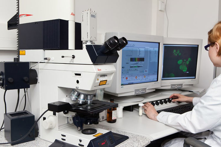 Bio2 / Confocal laser scanning microscope (CLSM)