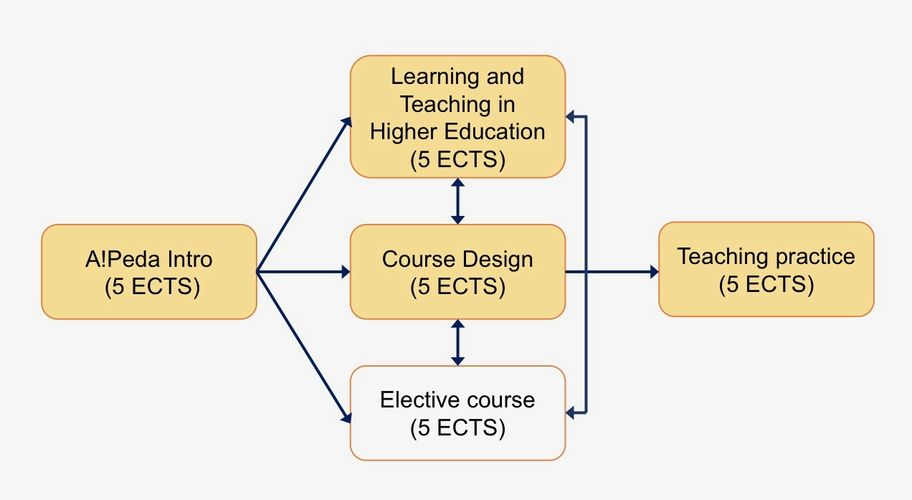 Structure of the pedagogical training