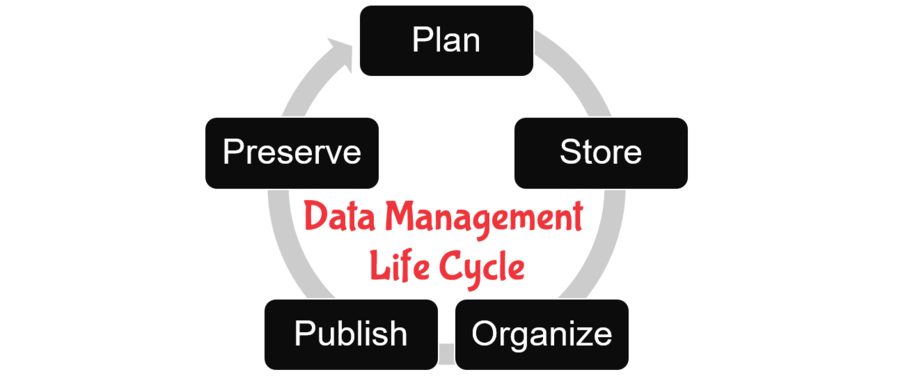 Data Management Life Cycle