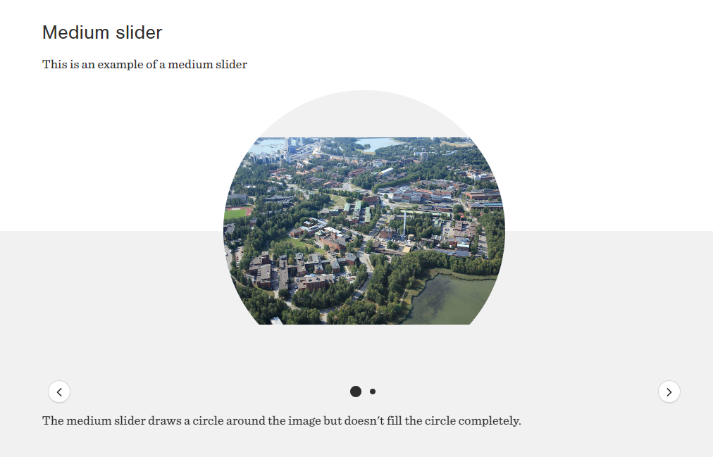 A screenshot of a webpage component called Media slider in medium mode