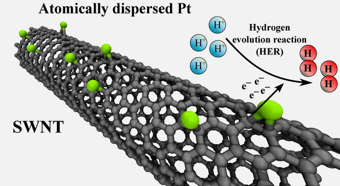 Modified carbon nanotubes (SWNT)