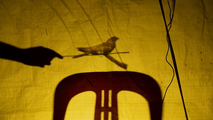 A screenshot from the film with shadows of a chair and a hand projected on a yellow fabric
