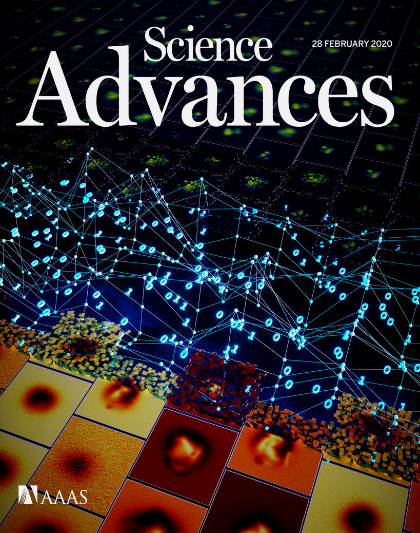 Cover image of the journal, featuring the researchers work