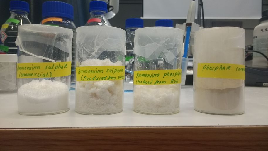 From left to right: commercial ammonium sulfate, ammonium sulfate produced from urea, ammonium phosphate produced from reject water and solid phosphate compound