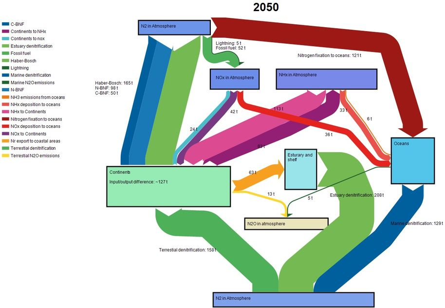 Nitrogen cycle in 2050