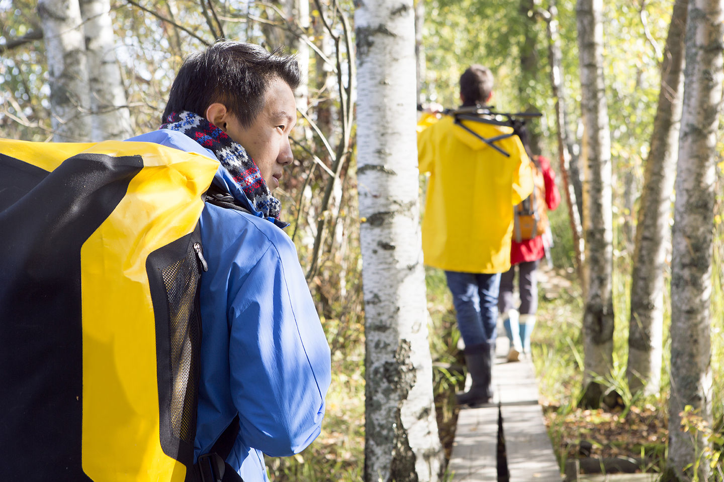 Aalto University - Walking in the woods
